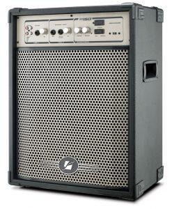 Caixa Amplificada Frahm - SS150